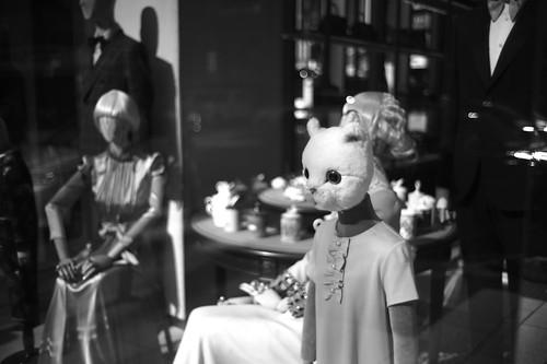 rabbit kids