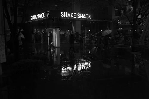 Shake Shack reflection