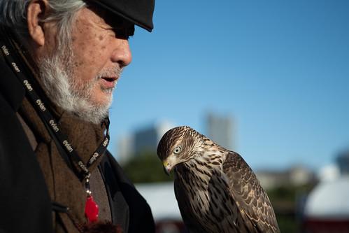 Japanese falconer