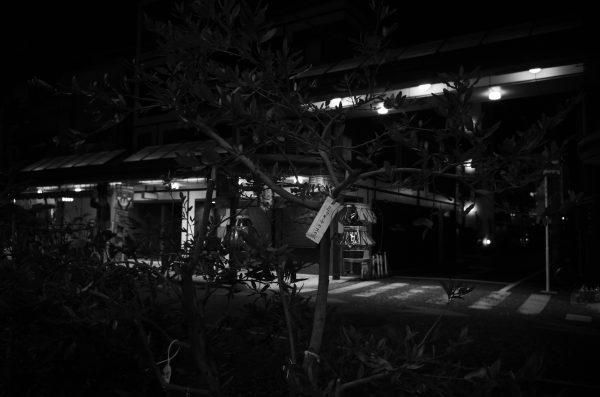 暗いレンズとM10 Monochromの夜